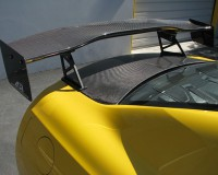 R35 - APR Carbon Wing