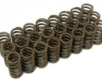 R32 - Cosworth Valve Spring Set