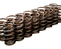 S13 - Cosworth High RPM Valve Spring Set SR20DET