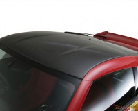 Z34 - Sunline Dry CF Roof Cover